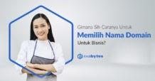 gimana sih cara memililh nama domain?